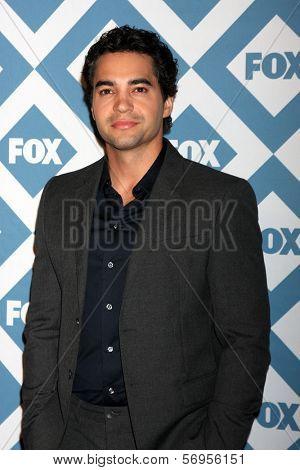 LOS ANGELES - JAN 13:  Ramon Rodriguez at the FOX TCA Winter 2014 Party at Langham Huntington Hotel on January 13, 2014 in Pasadena, CA