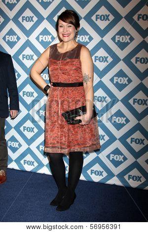 LOS ANGELES - JAN 13:  Amber Nash at the FOX TCA Winter 2014 Party at Langham Huntington Hotel on January 13, 2014 in Pasadena, CA