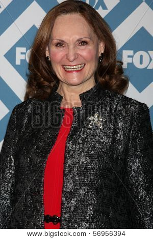 LOS ANGELES - JAN 13:  Beth Grant at the FOX TCA Winter 2014 Party at Langham Huntington Hotel on January 13, 2014 in Pasadena, CA
