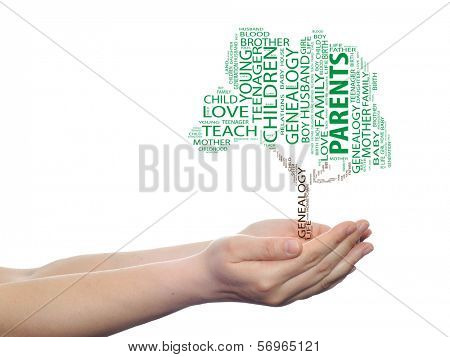 Concept or conceptual green parents education text word cloud or tagcloud as a tree on man or woman hand isolated on white background