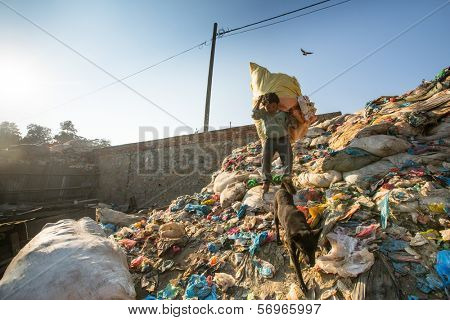 KATHMANDU, NEPAL - DEC 22, 2013: Unidentified man from poorer areas working in sorting of plastic on the dump, Dec 22, 2013 in KTM, Nepal. Only 35% of population have access to adequate sanitation.