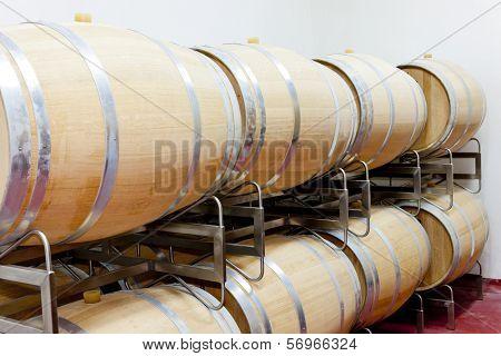 barrique barrels en winery