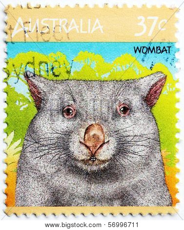 Wombat Stamp