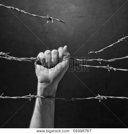 Hand Behind Barbed Wire