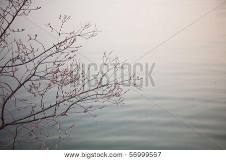 China Nanjing City Lake