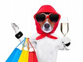 stock photo of diva  - diva dog shopping like a pro holding a bunch of bags - JPG