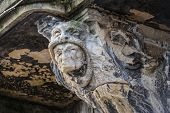 foto of gargoyles  - Scary gargoyle on the top of column in Lviv - JPG