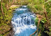 picture of mauritius  - The small river with thresholds in the tropical nature - JPG