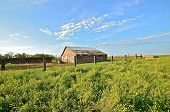 stock photo of feedlot  - Old Vintage house in nature countryside daytime summer - JPG