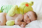 pic of baby frog  - Little baby boy - JPG