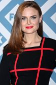 LOS ANGELES - JAN 13:  Emily Deschanel at the FOX TCA Winter 2014 Party at Langham Huntington Hotel