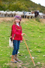 image of shepherdess  - Kid girl shepherdess happy with flock of sheep and wooden stick in Spain - JPG