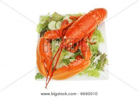Lobster On Salad