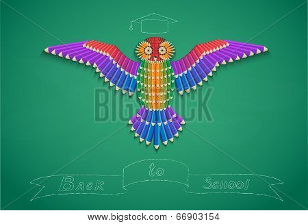 Pencil Owl
