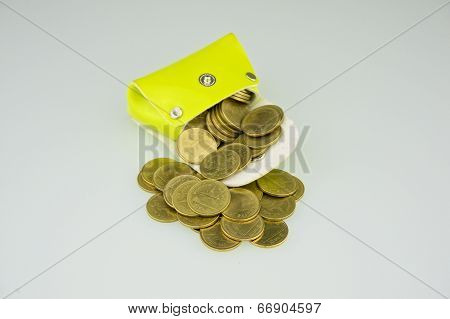 Light Green Pocket Has Gold Coin Gush
