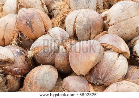 Pile Of Discarded Coconut Husk In Coconut Farm, Thailand