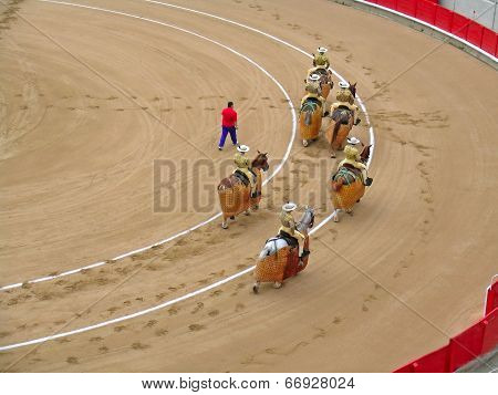 During corrida bullfighting
