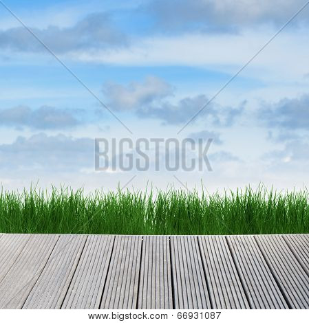 Landscape With Sky, Grass And Wood