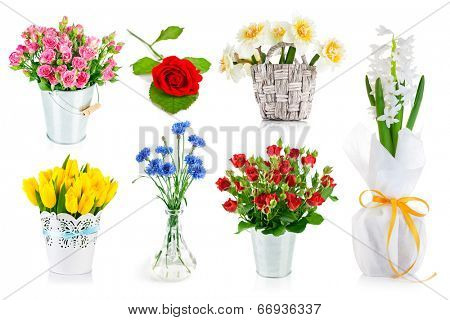 Set bunch of garden flowers. Isolated on white background