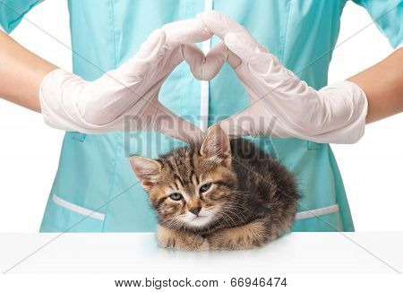 Care Of Pets