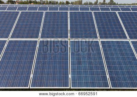 Solar Farm In The Countryside