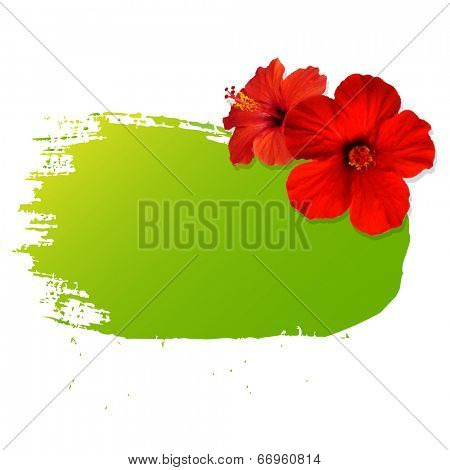Summer Banner Blot With Flower, Vector Illustration