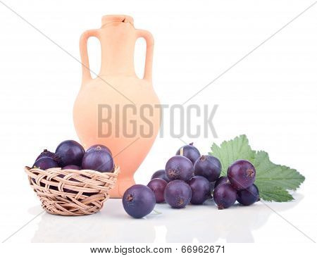 Blackcurrant In The Composition With Amphora