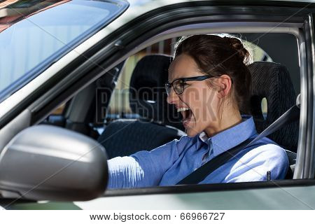 Woman Stopping The Car And Screaming