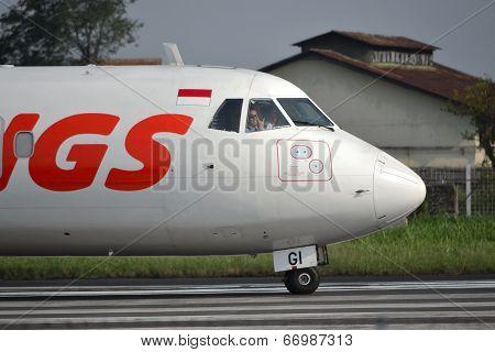 Wings Air airplane