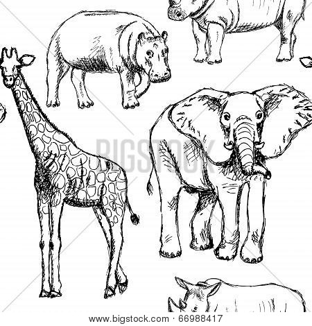 Sketch Elephant, Rhino, Giraffe And Hippo, Vector Seamless Pattern