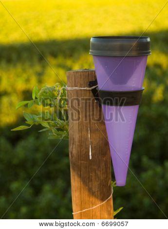 Rain Meter On Wooden Pole
