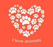 picture of animal footprint  - Heart animal - JPG
