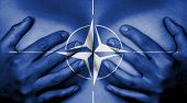 image of world health organization  - Upper part of female body hands covering breasts NATO - JPG