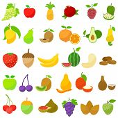 pic of papaya fruit  - vector illustration of collection of various fresh fruit - JPG