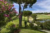 image of vilamoura  - A Landscape of a golf course in Vilamoura Portugal - JPG