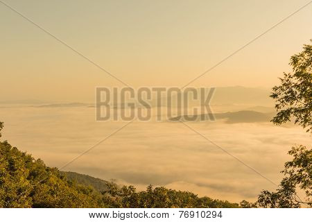 Fog On Mountain