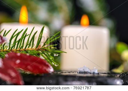 Winter Spa Concept Of Evergreen Branches With Drops, Candles On Zen Basalt Stones, Closeup