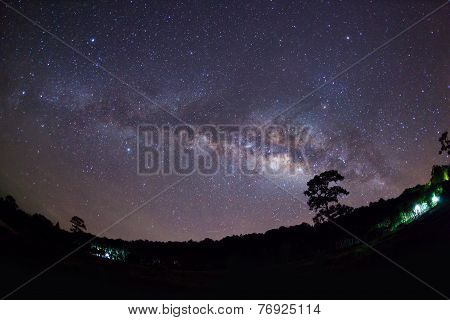 Silhouette of Tree and Milky Way Phu Hin Rong Kla National Park,Phitsanulok Thailand