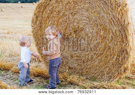 Two Little Toddler Boys Playing On Straw Field
