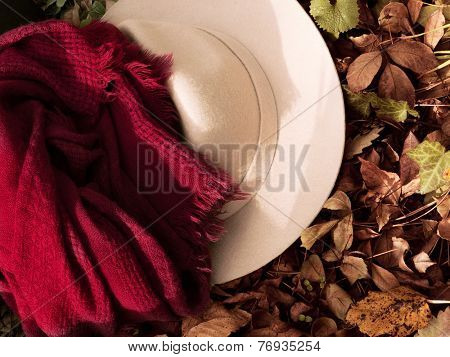 scarf and hat on the autumn leaf