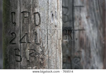 telephone pole STOCK