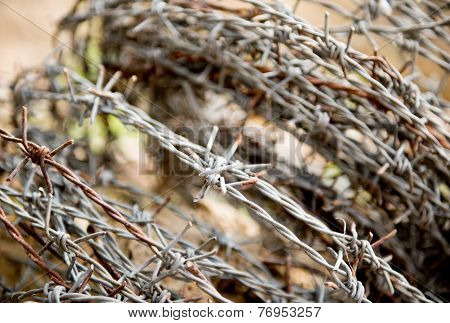 Old Rusty Barbed Wire