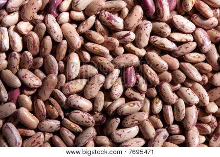 Sugar beans