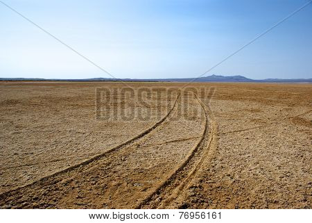 Car Tracks Into The Distance