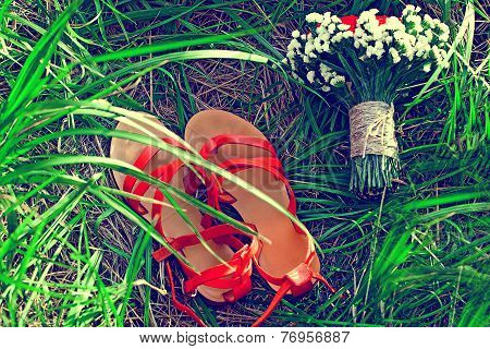 Red Sandals Lie On The Grass