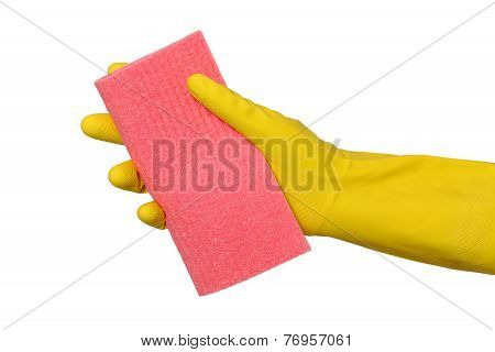 Cleaning Equipment, Sponge Rag In Hand