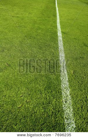 Football Green Grass Sports Field Camp Texture