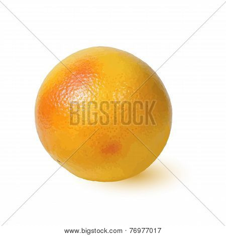 Ripe Golden Appetizing Grapefruit.