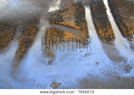 oily water on a disposal area