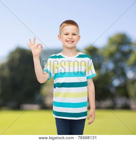 childhood, nature, gesture and people concept - smiling little boy making ok gesture over green park background
